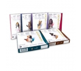 STRONGHOLD 30mg for dogs 2,6-5Kg